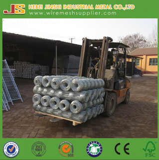 Factory direct sale hot dipped galvanized cheap cattle fence