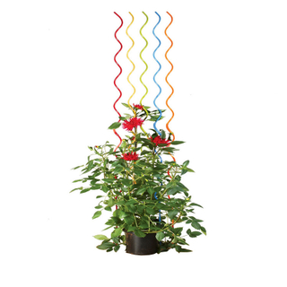 1.8m 6.5mm Powder coated garden sticks plant sticks plant support stake tomato spiral sticks